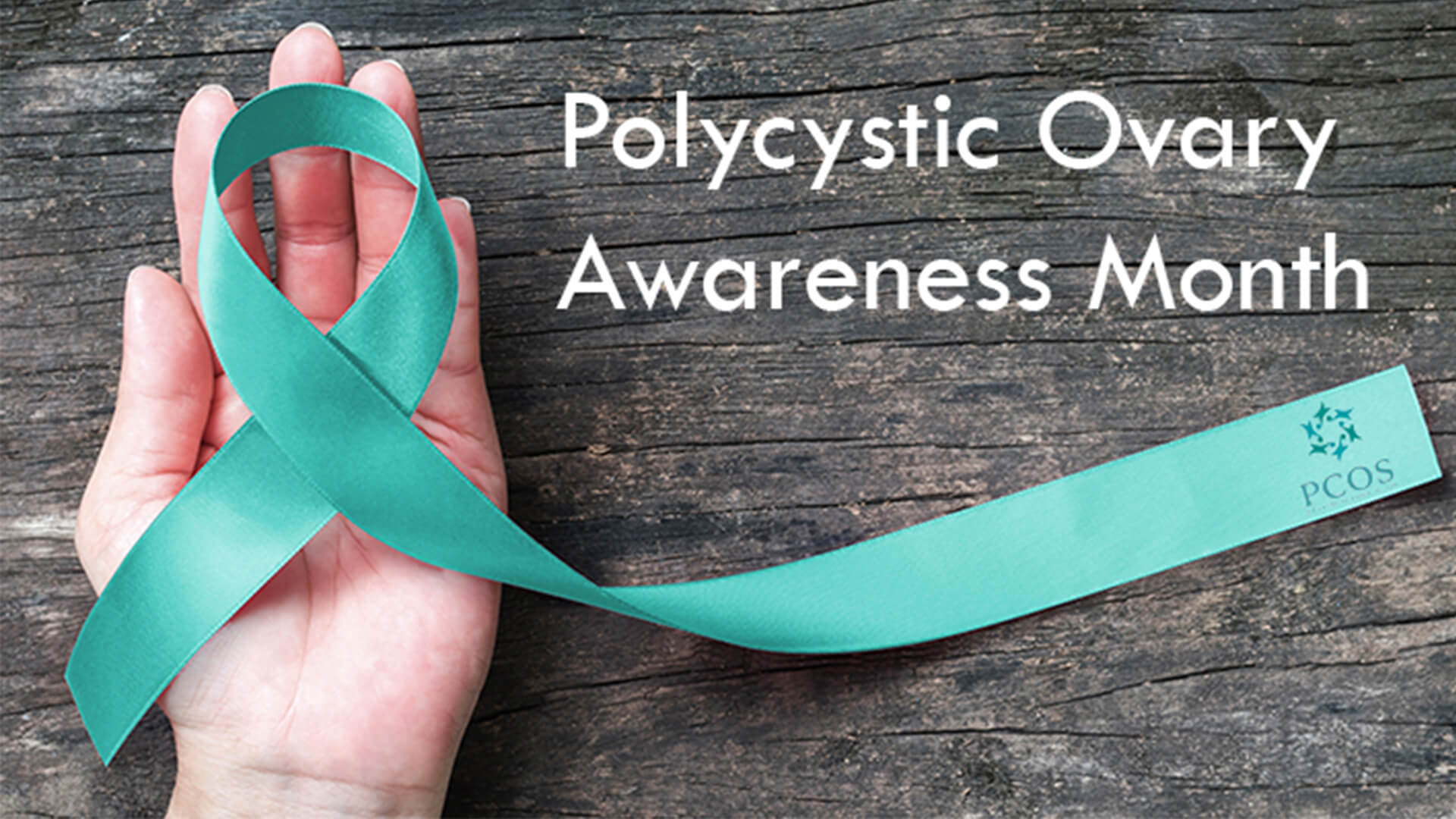Polycystic Ovary Month