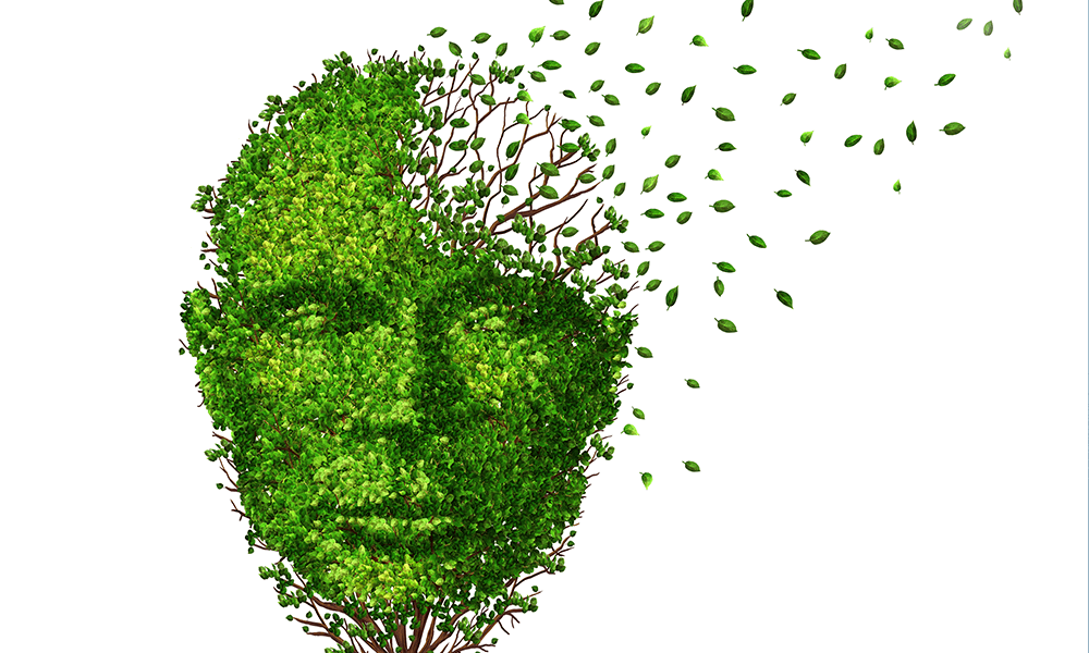 Alzheimer's and Other Neurodegenerative Diseases Are Contagious