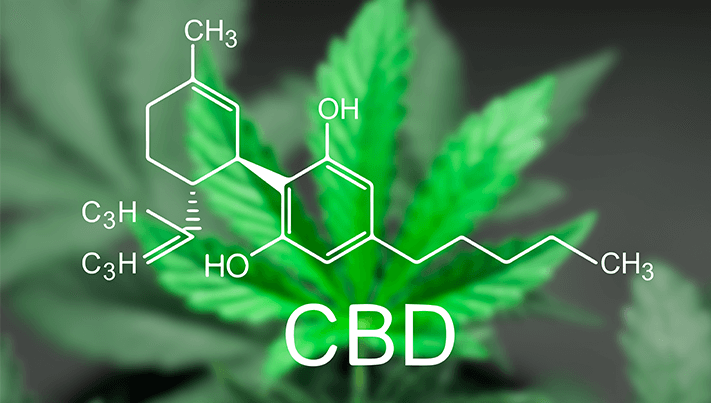 Why CBD really is the next big thing by Henri Sant-Cassia